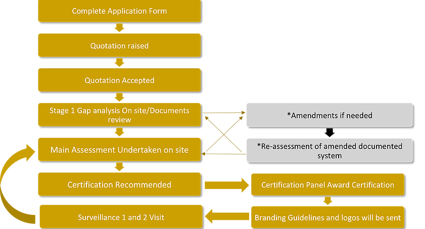 ISO audit and certification process